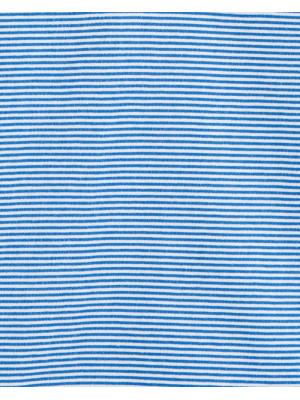 Carter's Tricou tip polo cu dulgi albastre